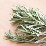 Rosemary (leaf)