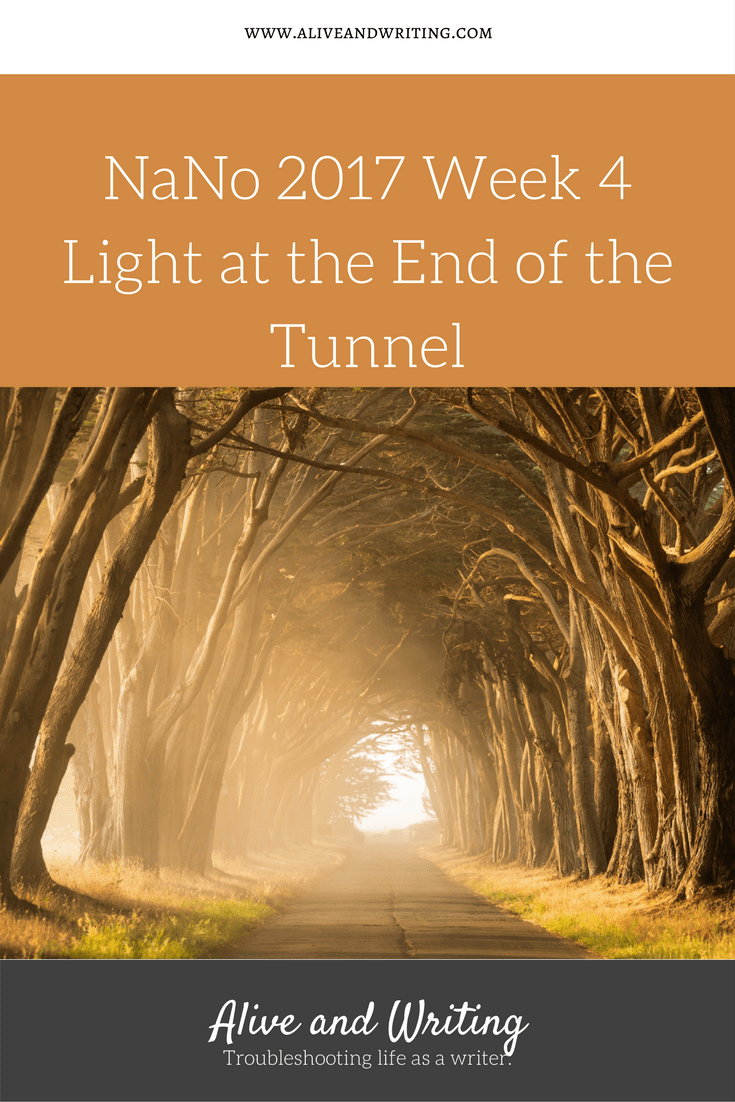 Alive and Writing NaNo Week 4 Light at the End of the Tunnel