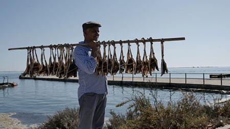 Chef André Magalhães, Olhão, Faro  27 de Setembro de 2015 450