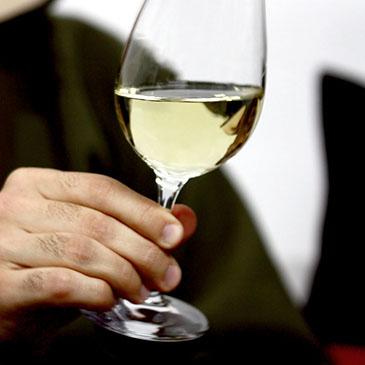 Provas Vinhos verdes 365