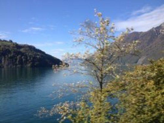 Through Swiss Alps