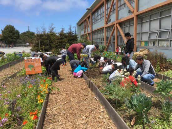Volunteer day in OMI/ Excelsior Living Library & Think Park