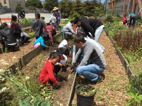 Young people with caring adults create a more ecological environment in their school-yard, neighborhood, and community