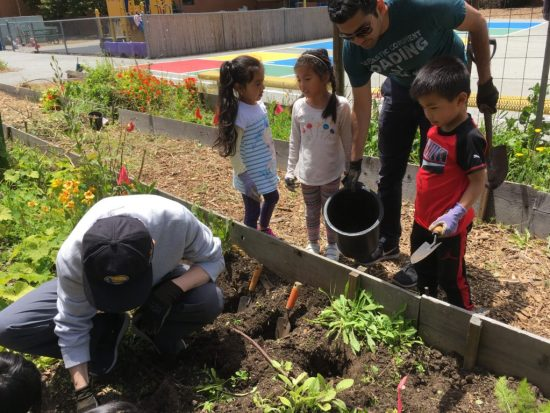 Creating a green future in OMI/ Excelsior Living Library & Think Park