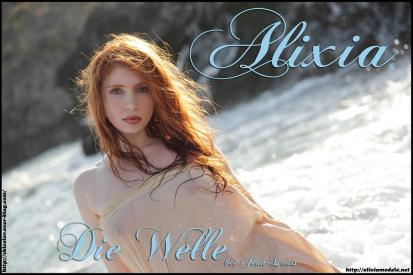 Cover Die Welle