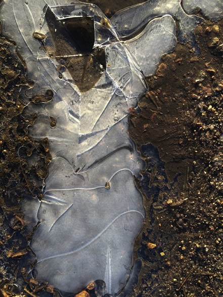 Stepped on frozen water