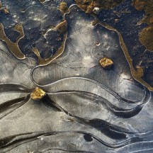 Stones in frozen puddle