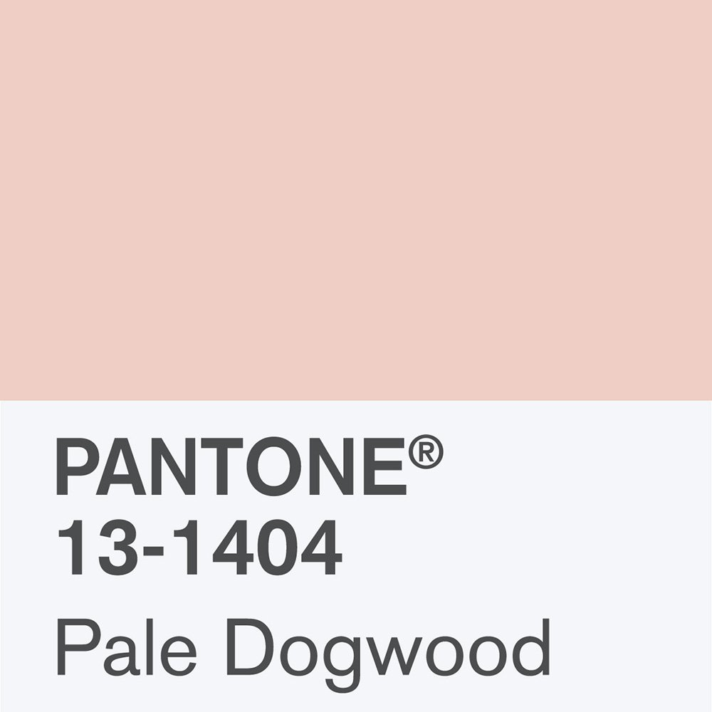 Pantone Pale Dogwood colour | Millennial pink ideas for your perfect home