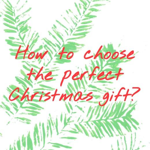 The perfect Christmas gift | Aliz's Wonderland