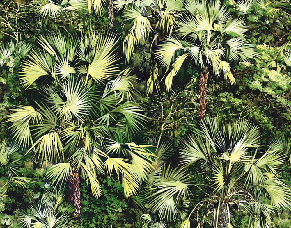 Pierre Frey Vue d'en Haut - Tropical wallpaper - Transform your home into a tropical paradise | Aliz's Wonderland