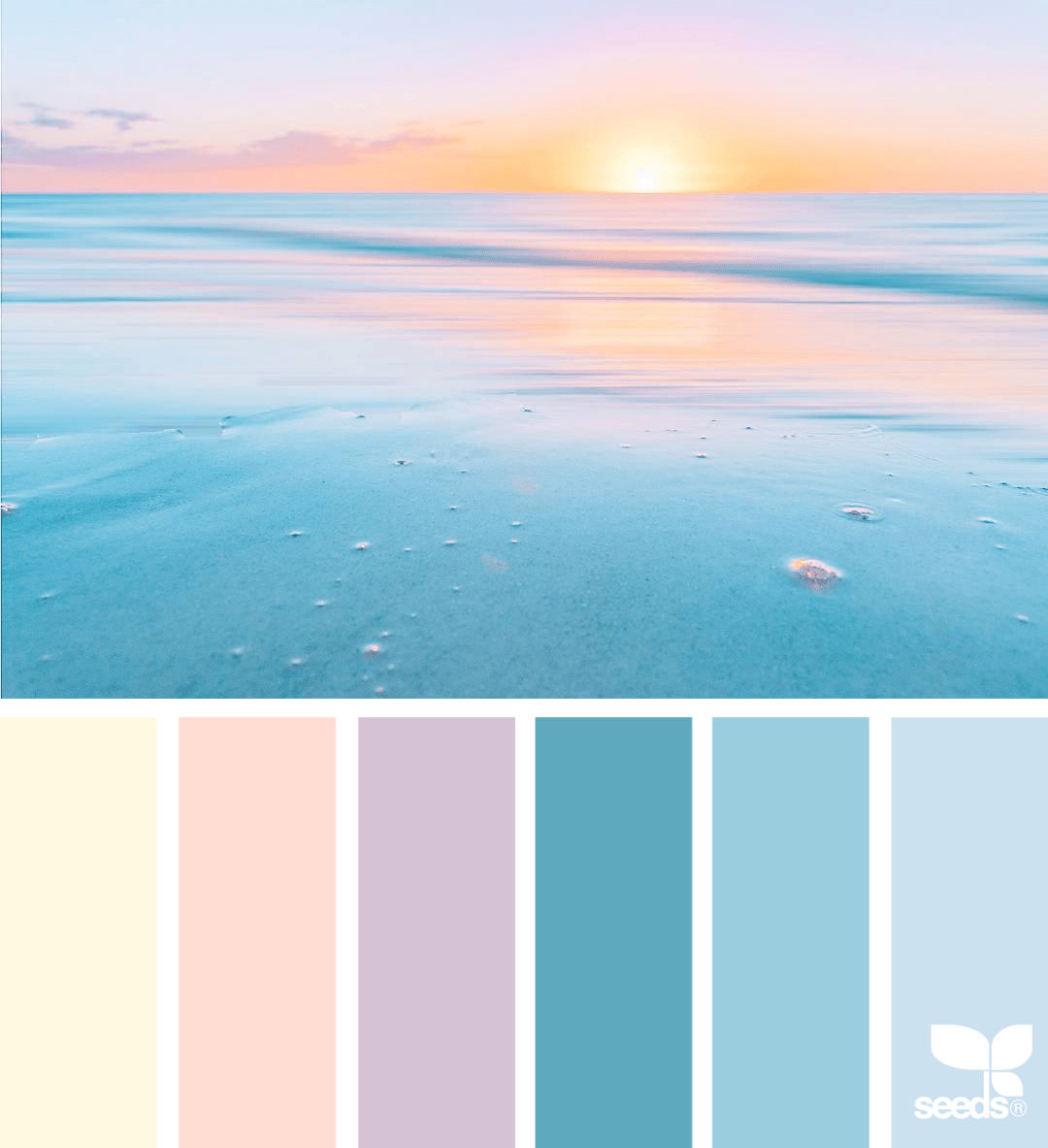 Design seed - Heavenly hues pink colour palette - Warm up your home with pink wall colour   Aliz's Wonderland