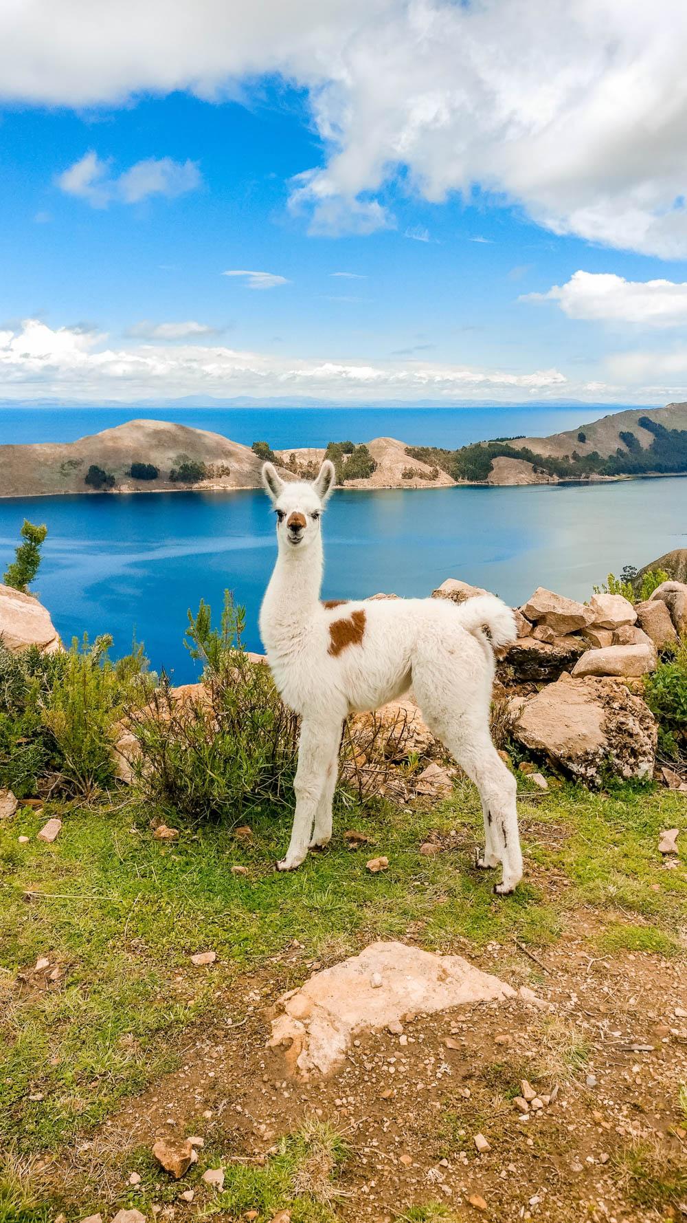 A day trip to Isla del Sol, Bolivia - Aliz's Wonderland