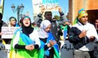 """أرحموش: سحبُ مشروع قانون ترسيم الأمازيغية قرارٌ """"لا دستوري"""""""