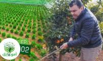 """الحلقة الثانية من """" أمو غا نك"""" عن الفلاحة البيئية والتجربة الرائدة للمغرب."""