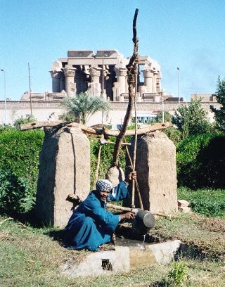Shaduf_2001_Egypt