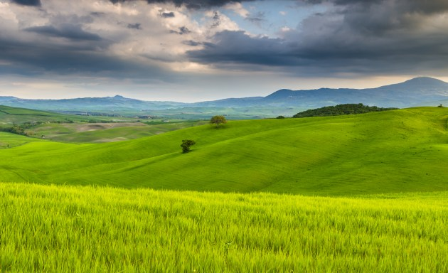 Green fields in Val D'Orcia (explored)