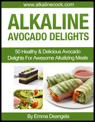 Alkaline Cook - Best Selling Recipes Book 22