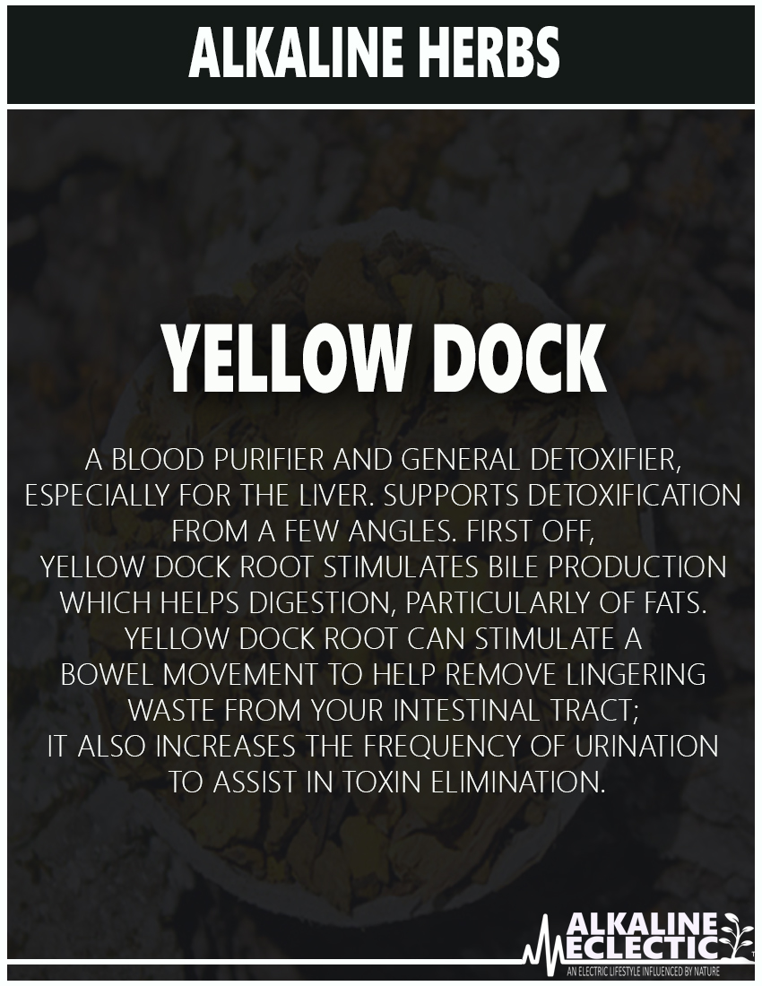 ALKALINE HERBS YELLOW DOCK PAGE 6