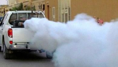 Photo of شكاوٍ من انتشار البعوض والحشرات في مدينة حماة ورئيس البلدية : نعمل على مكافحتها