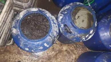 Photo of ضبط معمل كونسروة ومخللات يحتوي موادا فاسدة في عربين