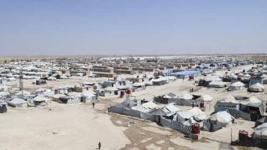 Photo of 8 قتلى خلال 72 ساعة في مخيم الهول بريف الحسكة