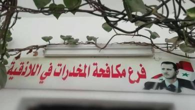 Photo of القبض على11 شخصا من تجار المخدرات ومتعاطيها في جبلة