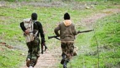 Photo of اعتقال 14 شخص حاولوا الانضمام الى التنظيمات المسلحة في سوريا