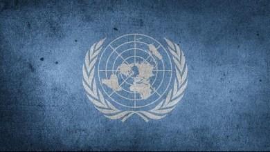 Photo of الأمم المتحدة: العقوبات ضاعفت أسعار المواد الغذائية في سوريا