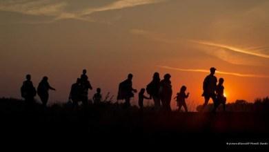 Photo of معظمهم سوريون ..حرس الحدود البولندي ينقذ مهاجرين علقوا في مستنقع على الحدود البيلاروسية