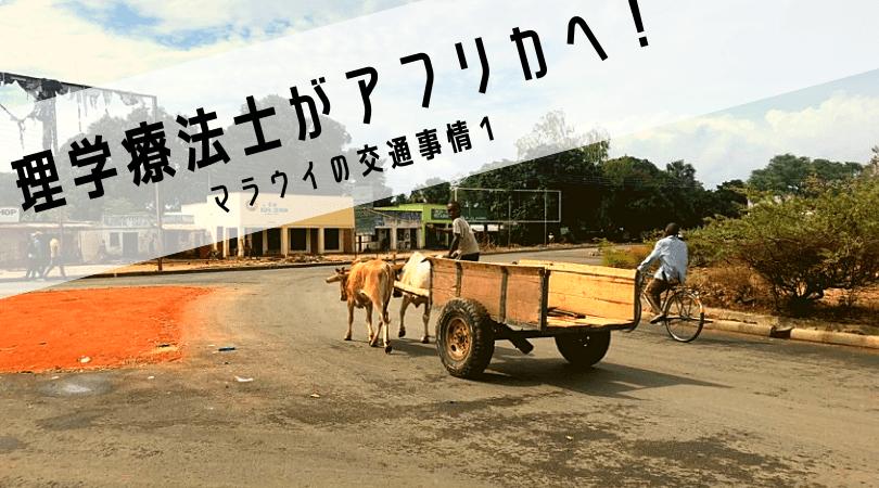 理学療法士がアフリカへ⑤マラウイの交通事情1