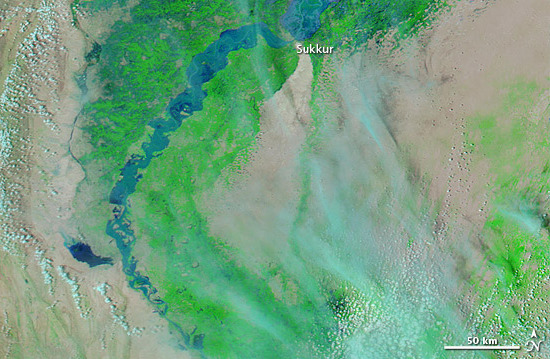 Flooding on lower Indus River, 12 August 2010 (NASA MODIS image, combination of infrared and visible light)