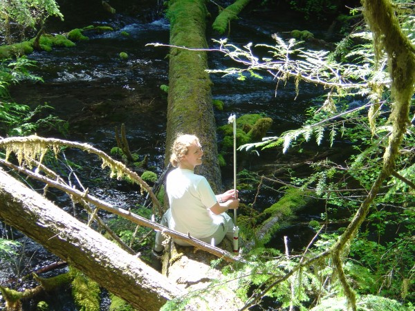 Wood in streams is utilitarian. During my PhD, I used stable large logs to cross streams and attach equipment.