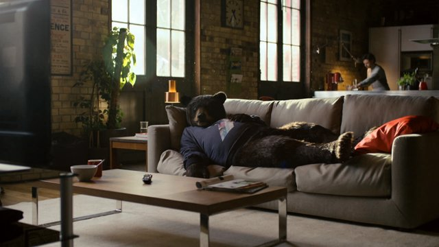 Ed the Sofa Bear Virgin Media