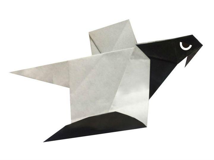 مدل ساده پرواز اوریگامی عقاب