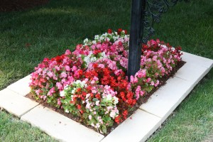 Landscaping in St. Louis West County