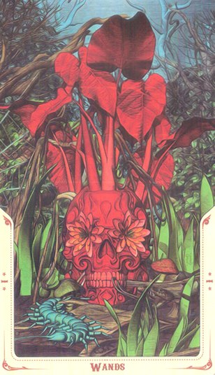 Туз Жезлов Таро святой смерти (Santa Muerte Tarot)