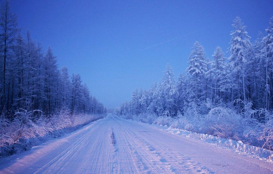 coldest city forest road