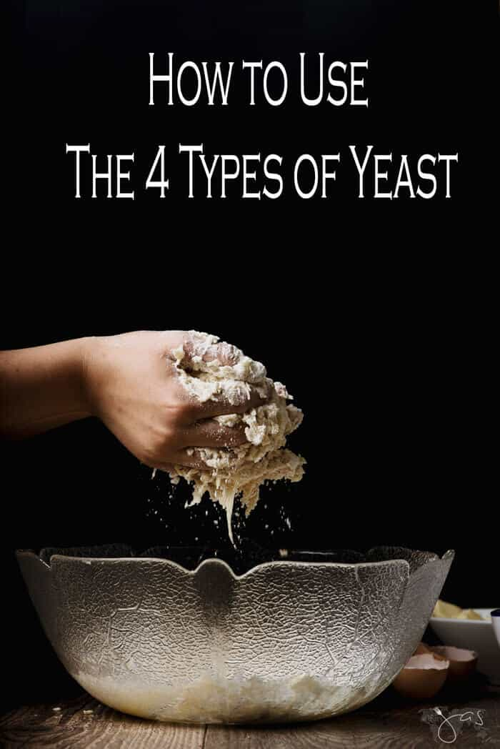 hoe to use the four types of yeast and master baking