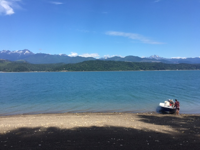 Hood Canal Archives All Waters