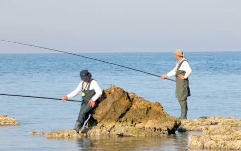 מחר צפוי להיפתח מחדש מרחב הדייג ברצועת עזה ל-12 מיילים ימיים