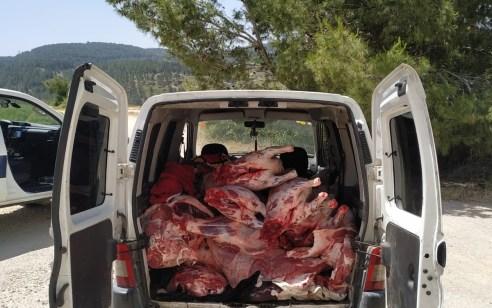 נעצר חשוד שהוביל כחצי טון בשר לא ראוי למאכל אדם ברכבו