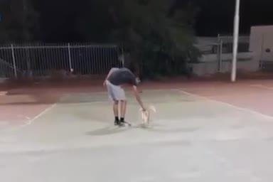 צפו: בן 16 מהרצליה נעצר בעקבות סרטון שפורסם ברשתות החברתיות בו נראית התעללות קשה בחתולה