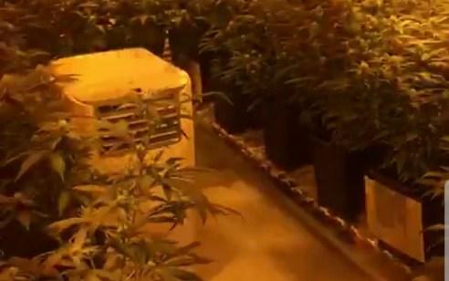 הפר תנאי מעצר בית ואותר בתוך מעבדת סמים