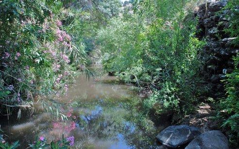 משרד הבריאות אוסר רחצה בנחלים בצפון ובהם הירדן, ההררי, ג'ילבון, משושים ובניאס 