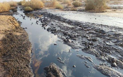 """אסון זיהום הנפט בערבה: קצא""""א תשלם פיצוי של 100 מיליון שקל בגין הנזק שנגרם בשמורת עברונה"""