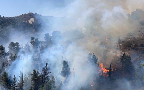 שריפה משתוללת במבשרת ציון: 22 צוותי כיבוי ומטוסים פועלים במקום – תושבי רחוב הסמוך לשריפה פונו