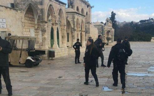 סוכל פיגוע דקירה בהר הבית:  2 מחבלים נעצרו