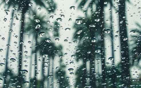 התחזית: גשם בצפון, אחר הצהריים ייתכן גשם קל גםבמרכז