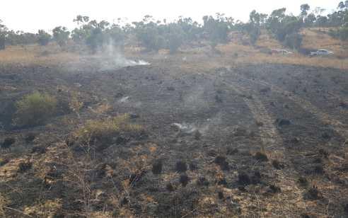 טרור הבלונים: 2 שריפות נגרמו מבלונים באזור בארי – לאורך כל היום זוהו הפרחות מהרצועה