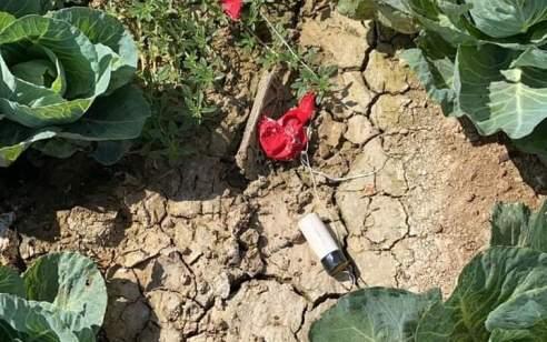 טרור הבלונים: 400 דונם של שמורת טבע נשרפו בבארי – לפחות 25 שריפות נגרמו מבלונים בעוטף עזה
